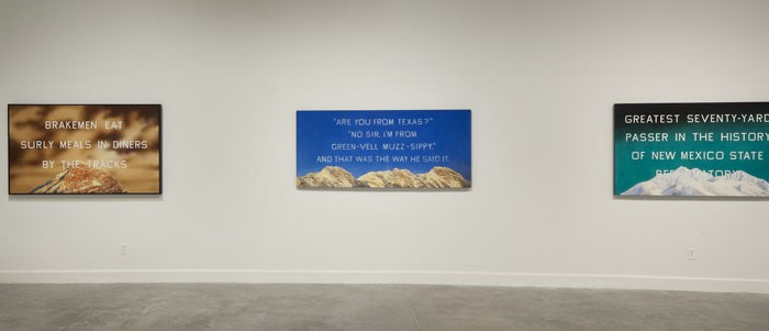 Installation view at MOCA, North Miami