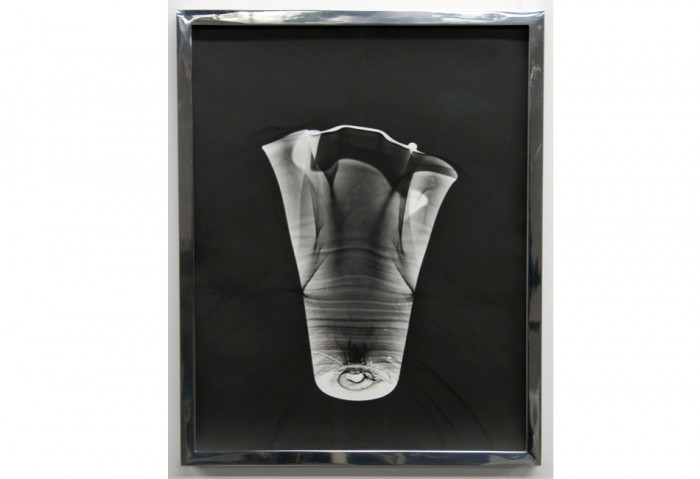 Talia Chetrit<br>Vase/Screen, 2010<br>silver gelatin print<br>14 in. x 11 in.<br>Collection of the Museum of Contemporary Art, North Miami <br>Museum purchase with funds from MOCA's Bohemian Bash
