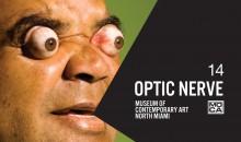 Optic Nerve 14