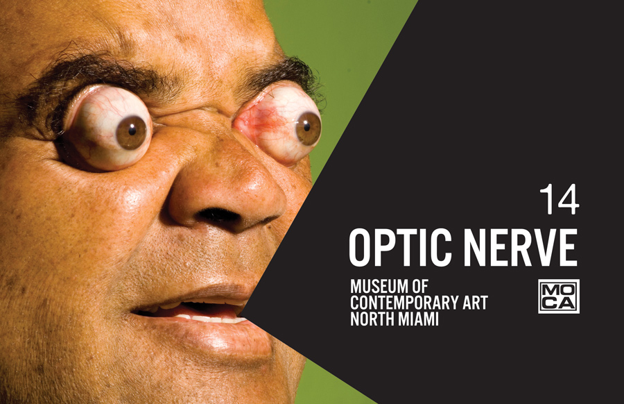 Optic Nerve 14