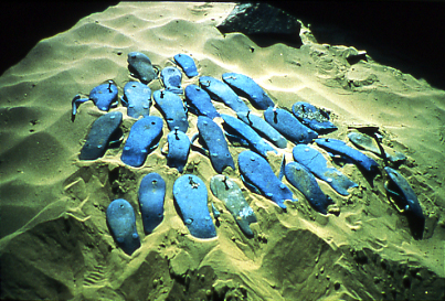 <i>Blue Sandals</i>, 1996<br>Cibachrome print, 12 7/16 x 18 5/8 inches (31.59 x 47.31 cm)<br>Purchased with funds provided by the Jacques and Natasha Gelman Foundation