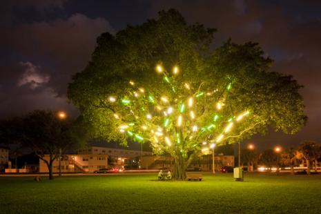 Mark Handforth, <i>Electric Tree</i>, 1998-2001, Florescent Light fixtures, Dimensions variable, Collection of the Museum of Contemporary Art, North Miami, Gift of the Artist