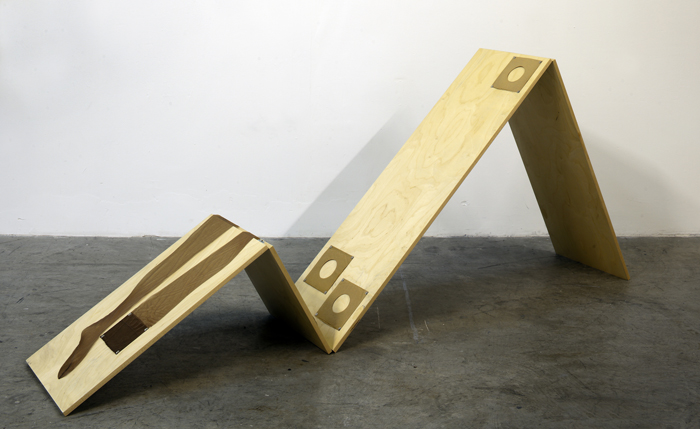 <b>Tom Burr</b>, <i>Bush Laid Bare</i>, 2009<br>Collection of the Museum of Contemporary Art, North Miami.  Gift of Barbara Zomlefer-Herzberg
