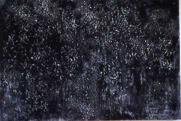 <i>For the Coral Castle</i>, 1995<br>Acrylic on canvas, 66 x 96 inches (167.64 x 243.84 cm)<br>Gift of Anna Atkins Simkins