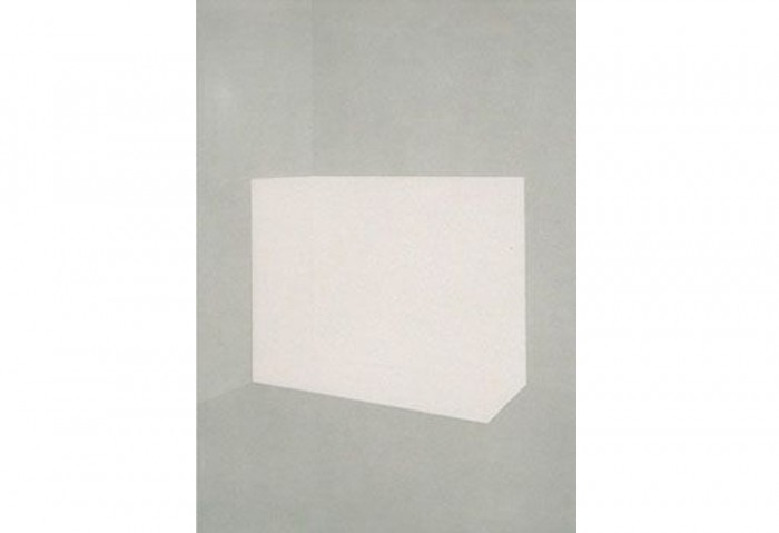 <i>Cam (from Still Life Suite)</i>, 1990-1991<br>Aquatint (suite of 8), 42 x 30 inches (106.68 x 76.2 cm)<br>Gift of Paul and Estelle Berg