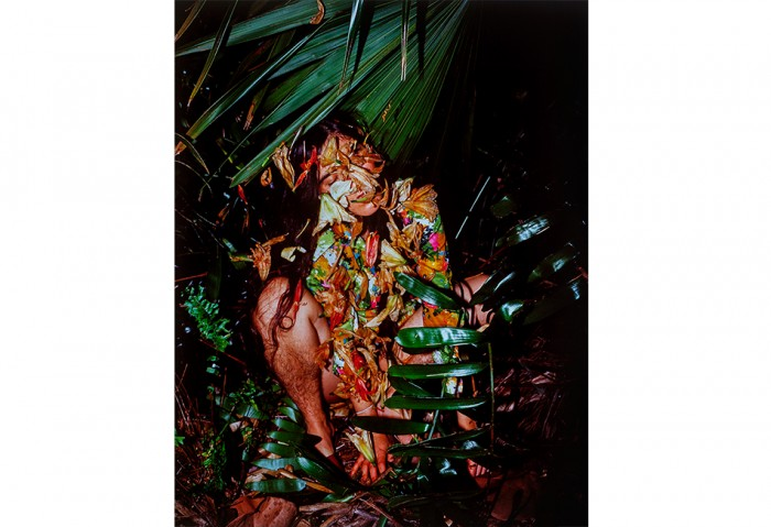 <i>Untitled</i>, 2001<br>Cibachrome, 50 x 40 inches (127 x 101.6 cm)<br>Gift of Michael and Raquel Scheck