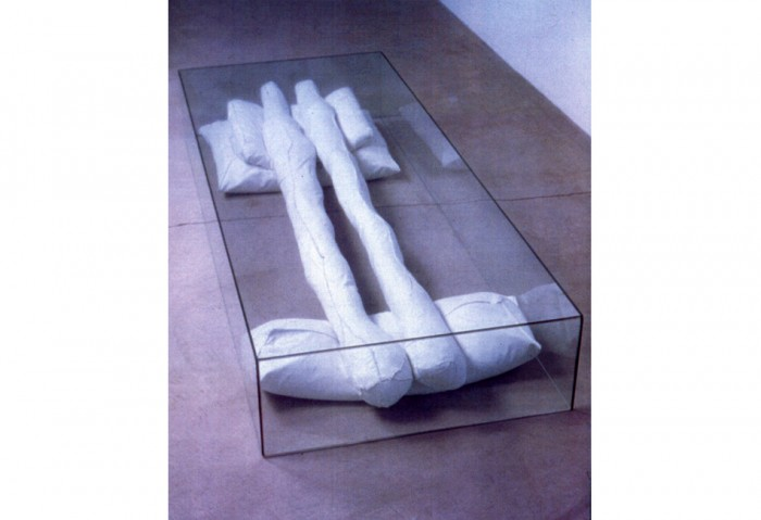 <i>Box #15 (The Official Stitch and Hide Procedure Series)</i>, 1995<br>Artist's possessions, tarp, dental floss, and glass, 10 1/4 x 74 3/4 x 29 1/2 inches (26.04 x 189.87 x 74.93 cm)<br>	Gift of Eileen and Peter Norton