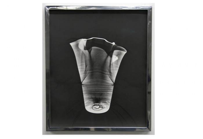 <i>Vasegram #3</i>, 2010<br>Silver gelatin print, 14 x 11 inches (35.56 x 27.94 cm)<br>Purchased with funds from MOCA's Bohemian Bash