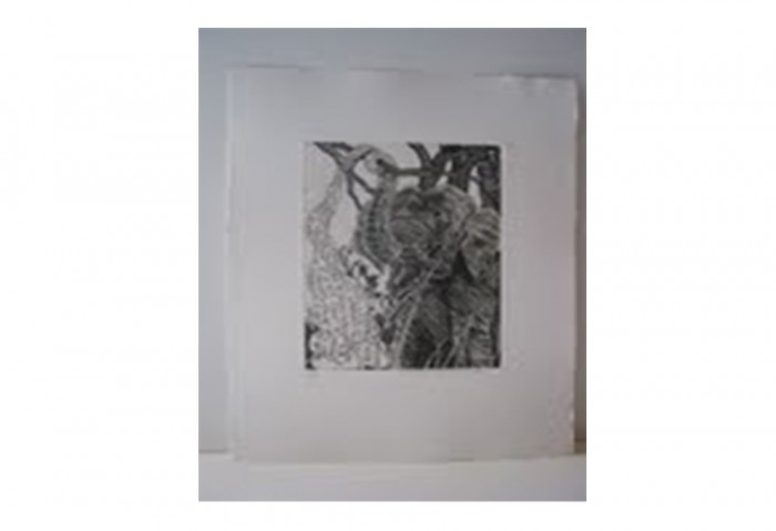 <i>Bye and Bye (Elephant)</i>, 2002<br>Etching on paper, 17 1/4 x 14 1/4 inches (43.82 x 36.2 cm)<br>Gift of Dr. Carl and Shirley Schwartz