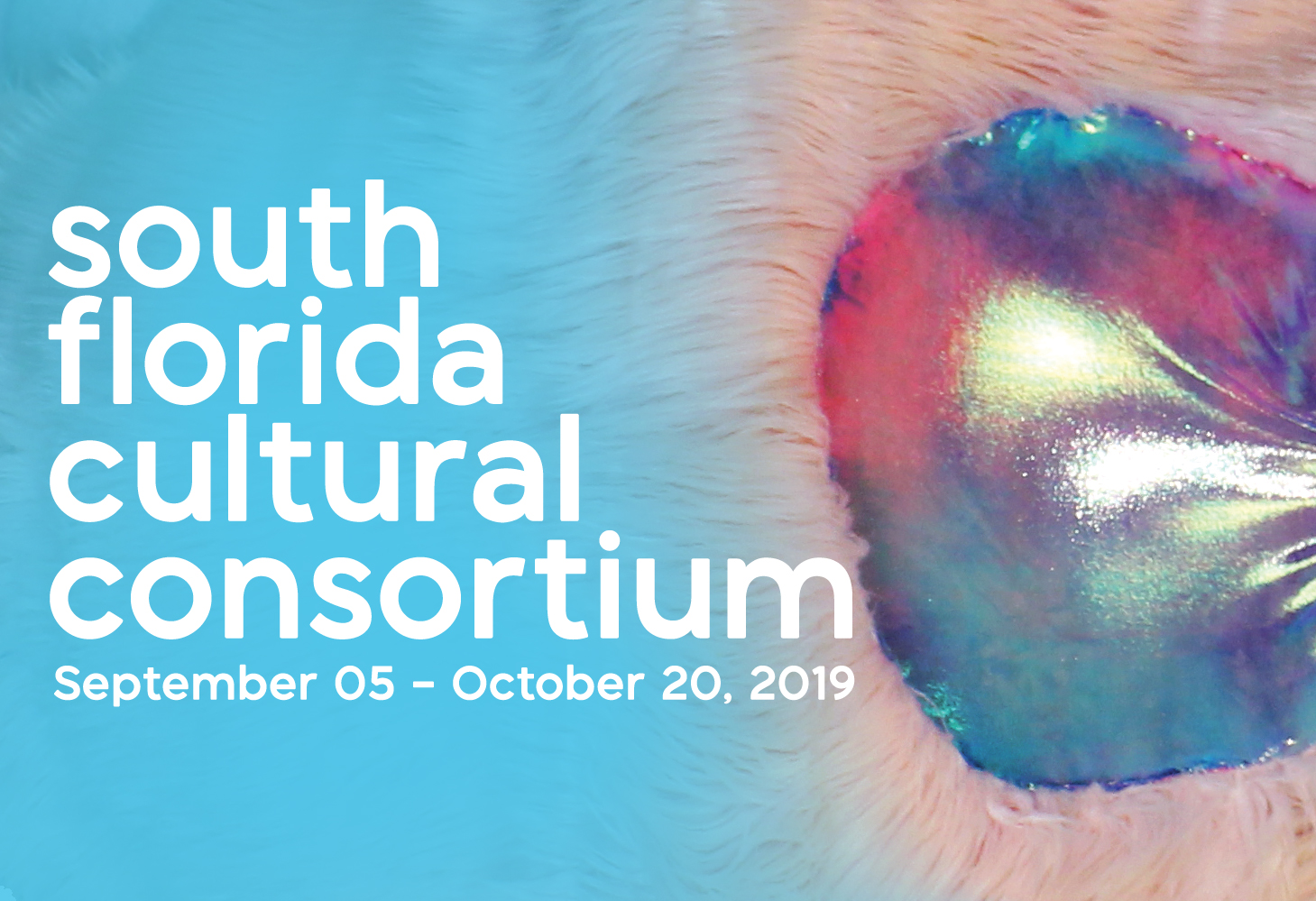 "South florida cultural consortium (sfcc) 2019 with detail of the fur of Jennifer Clay's ""Wearable Friends"""