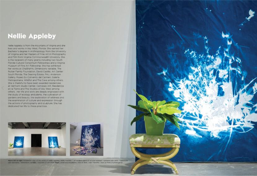 Sfcc 2019 catalog