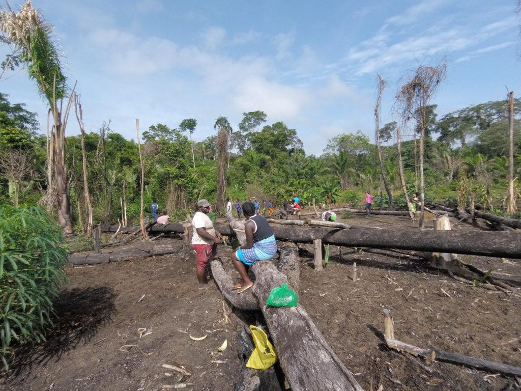 Moca check in: onajide shabaka Community rice planting, Suriname