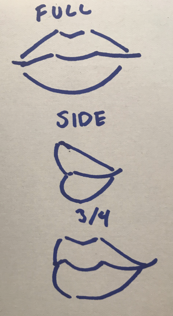Finally lets add a mouth, then we can add the fun details! Here are a few ways to draw mouths: full, side, 3/4. I chose the full view this time, and cut it into two separate parts, I also cut out an ear for fun.